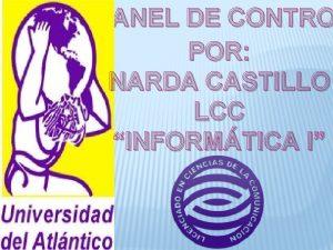PANEL DE CONTRO POR NARDA CASTILLO LCC INFORMTICA