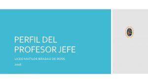 PERFIL DEL PROFESOR JEFE LICEO MATILDE BRADAU DE
