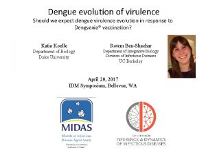 Dengue evolution of virulence Should we expect dengue