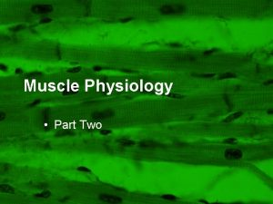 Muscle Physiology Part Two Lecture Outline Muscle Function