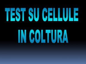 Vitalit cellulare proliferazione e funzionalit cellulare La sopravvivenza