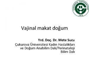 Vajinal makat doum Yrd Do Dr Mete Sucu