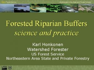USDA Forest Service Northeastern Area State and Private