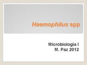 Haemophilus spp Microbiologa I M Paz 2012 Haemophilus