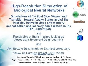 HighResolution Simulation of Biological Neural Networks Simulations of