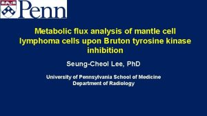 Metabolic flux analysis of mantle cell lymphoma cells