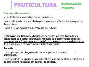 FRUTICULTURA PROPAGAO DE FRUTEIRAS Reproduo assexual multiplicao vegetativa