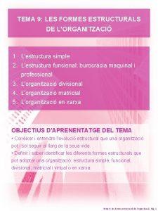 TEMA 9 LES FORMES ESTRUCTURALS DE LORGANITZACI 1