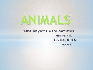Example It is a cat ANIMALS ANIMALS Can