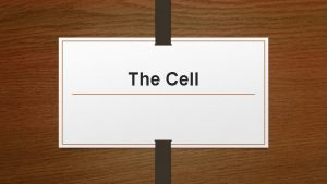 The Cell Types of Cells Prokaryotic Cell The