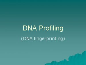 DNA Profiling DNA fingerprinting What is DNA Profiling
