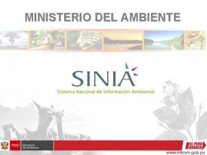 MINISTERIO DEL AMBIENTE INFORMACION AMBIENTAL La informacin ambiental