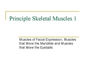 Principle Skeletal Muscles 1 Muscles of Facial Expression