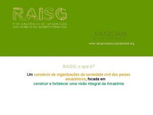 www amazoniasocioambiental org RAISG o que Um consrcio