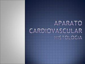 APARATO CARDIOVASCULAR HISTOLOGA APARATO CARDIOVASCULAR Se compone de