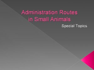 Administration Routes in Small Animals Special Topics Routes