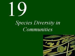 19 Species Diversity in Communities Chapter 19 Species