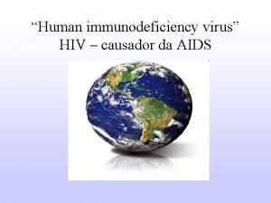 Human immunodeficiency virus HIV causador da AIDS Retrovrus