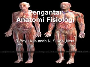 Pengantar Anatomi Fisiologi R Bayu Kusumah N S