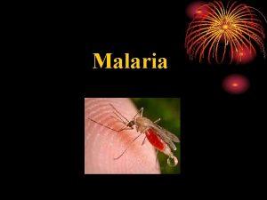 Malaria Alternative names Quartan malaria Falciparum malaria Blackwater
