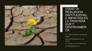 COVID 19 RESILIENCIA INSTITUCIONAL E IMPACTOS EN LA
