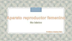 Aparato reproductor femenino Profesora Romina Pairo Cul es