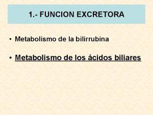 1 FUNCION EXCRETORA Metabolismo de la bilirrubina Metabolismo