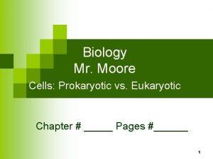 Biology Mr Moore Cells Prokaryotic vs Eukaryotic Chapter