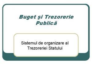 Buget i Trezorerie Public Sistemul de organizare al