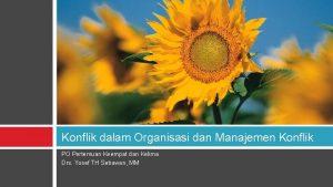 Konflik dalam Organisasi dan Manajemen Konflik PO Pertemuan