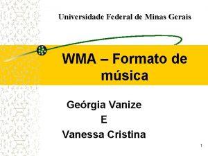 Universidade Federal de Minas Gerais WMA Formato de