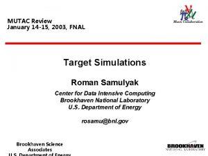 MUTAC Review January 14 15 2003 FNAL Target