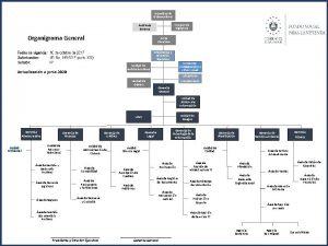 Asamblea de Gobernadores Consejo de Vigilancia Auditora Externa
