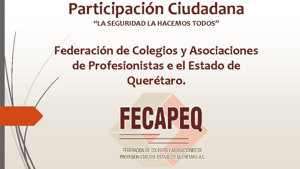 Participacin Ciudadana LA SEGURIDAD LA HACEMOS TODOS Federacin