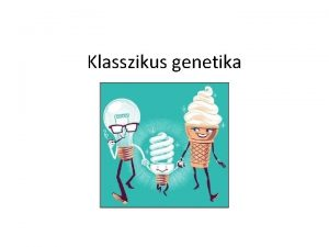 Klasszikus genetika Genetikai alapfogalmak GN a DNS rtelmes