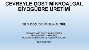EVREYLE DOST MKROALGAL BYOGBRE RETM YRD DO DR