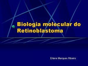 Biologia molecular do Retinoblastoma Erlane Marques Ribeiro Retinoblastoma