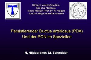 logos Klinikum Veterinrmedizin Klinik fr Kleintiere Innere Medizin
