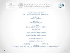 Tecnolgico Nacional de Mxico INSTITUTO TECNOLGICO DE SALINA