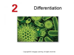 Differentiation Copyright Cengage Learning All rights reserved The
