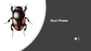 Noun Phrases Nouns A noun names a person