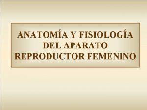 ANATOMA Y FISIOLOGA DEL APARATO REPRODUCTOR FEMENINO APARATO