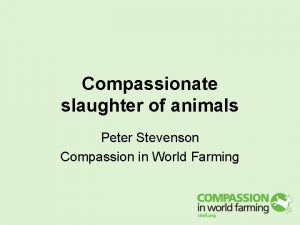 Compassionate slaughter of animals Peter Stevenson Compassion in