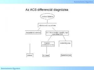 Az ACS differencil diagnzisa Az ACS patogenezise NSTEMI
