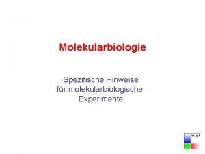 Molekularbiologie Spezifische Hinweise fr molekularbiologische Experimente Gentechnikgesetz Gen