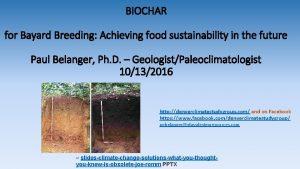 BIOCHAR for Bayard Breeding Achieving food sustainability in