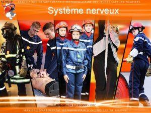 Systme nerveux ADMJSP ple numrisation 2017 Systme nerveux