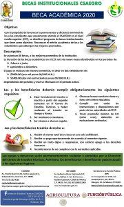 BECAS INSTITUCIONALES CSAEGRO BECA ACADMICA 2020 Objetivo Con