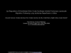 UpRegulation of Endothelial Nitric Oxide Synthase Inhibits Pulmonary