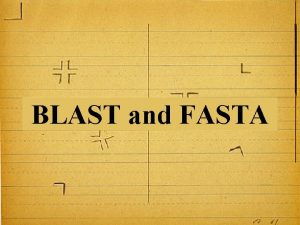 BLAST and FASTA 1 Pairwise Alignment Global Local